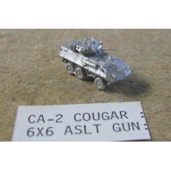CinC CA002 Cougar FSV