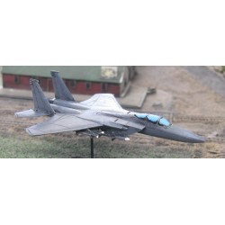 CinC MS035 F15D Eagle
