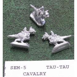 C SEM005 Cavalry